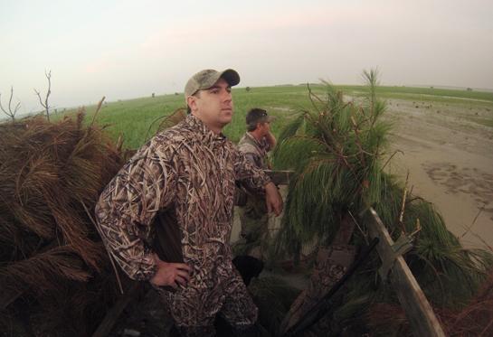 Louisiana Ducks: Waiting on the Blue Wings