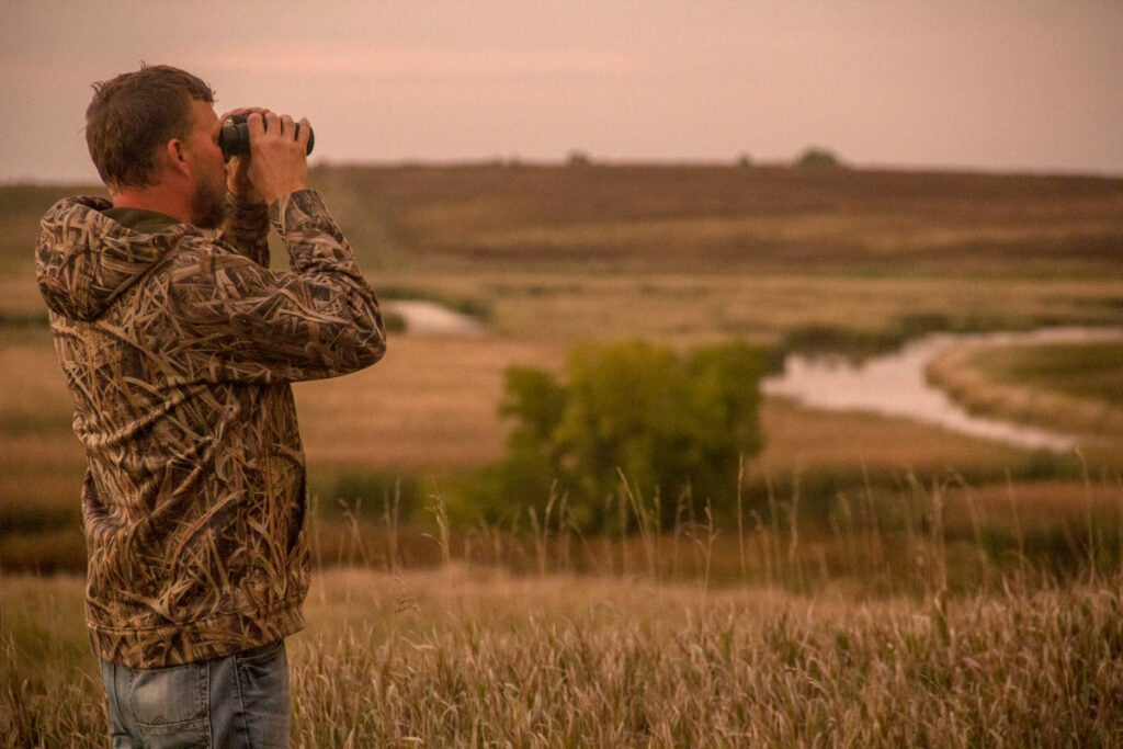 scouting for ducks