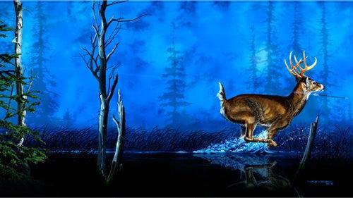 httpswww.outdoorlife.comsitesoutdoorlife.comfilesimport2014importImage2008legacyoutdoorlifedenault_paintings_SomethingsAmiss.jpg
