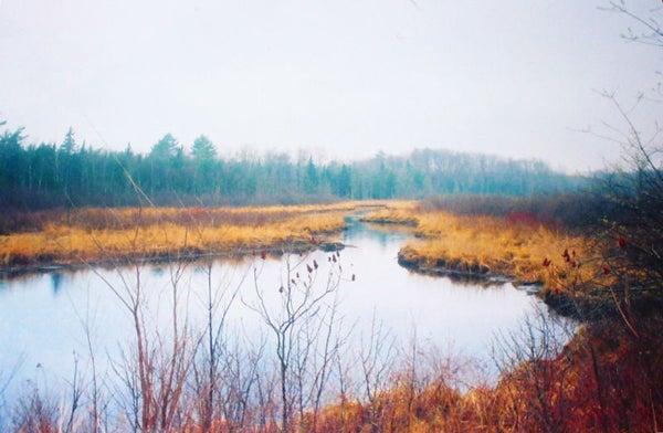 httpswww.outdoorlife.comsitesoutdoorlife.comfilesimport2014importImage2011photo10013215791_106.jpg