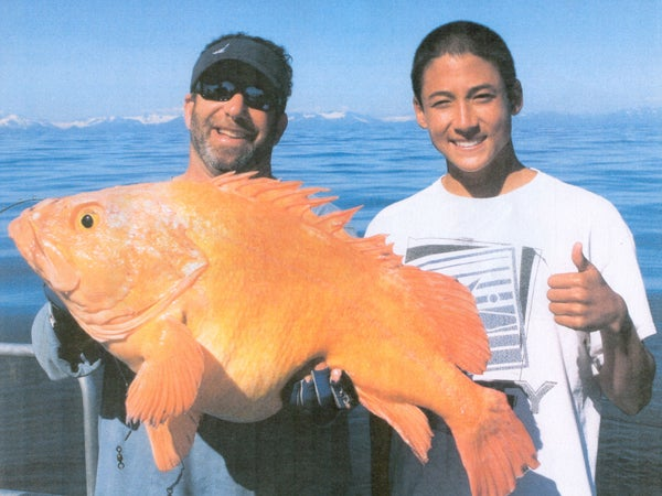 httpswww.outdoorlife.comsitesoutdoorlife.comfilesimport2014importImage2010photo10013215792_yelloweye_rockfish_-_36266.jpg