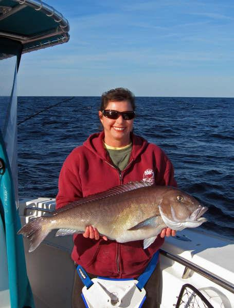 httpswww.outdoorlife.comsitesoutdoorlife.comfilesimport2014importImage2009photo3bigbluelineTilefish_0.jpg