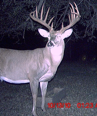 188-Inch Buck Breaks Oklahoma Record