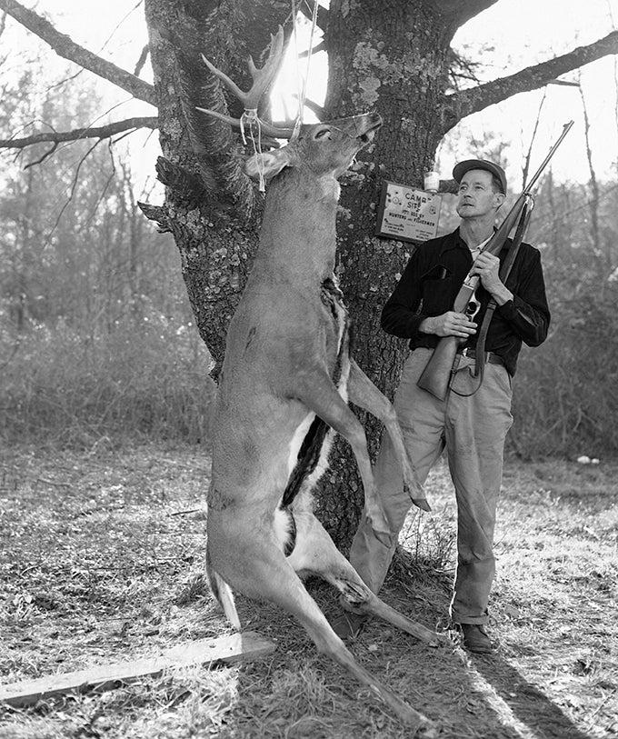 Deer Cartridge Showdown: .223 Rem. vs .30/30