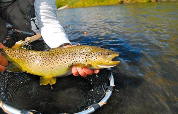 httpswww.outdoorlife.comsitesoutdoorlife.comfilesimport2013images201010slide28_2.jpg