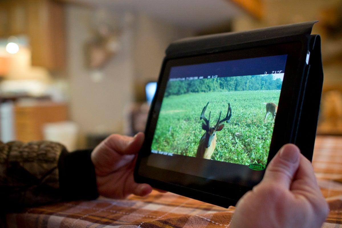 5 Ways to Not Ruin Your Deer Season (While Still Enjoying Your Preseason)