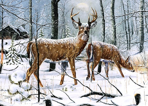 httpswww.outdoorlife.comsitesoutdoorlife.comfilesimport2014importImage2008legacyoutdoorlifedenault_paintings_PassingBy.jpg