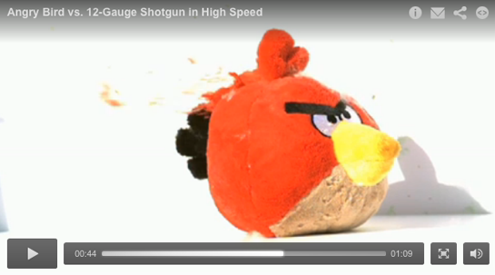 Video: Death to the Angry Birds