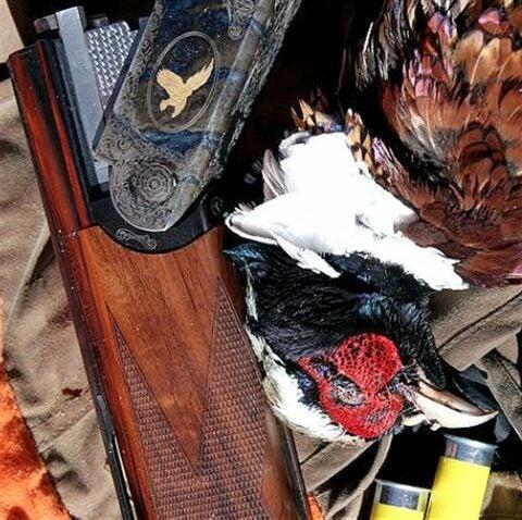 httpswww.outdoorlife.comsitesoutdoorlife.comfilesimport2014importImage2009photo76._Iowa.jpg