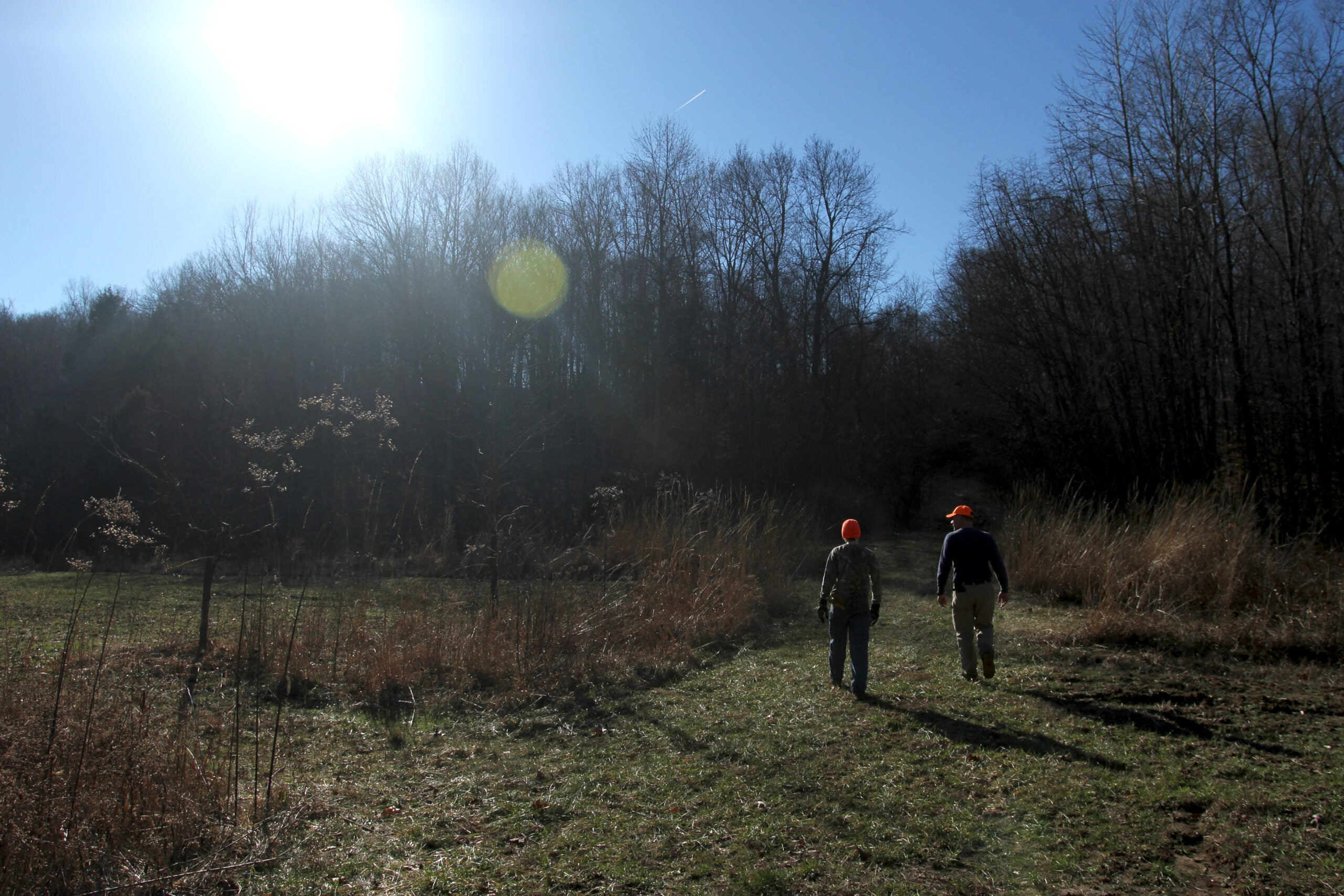 Whitetail Deer: Share The Hunt