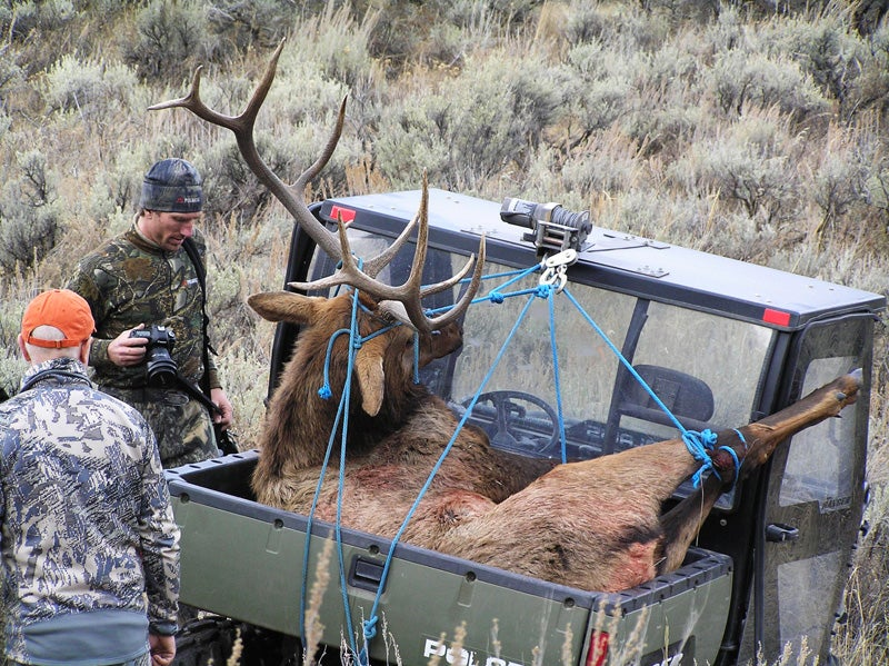 httpswww.outdoorlife.comsitesoutdoorlife.comfilesimport2014importImage2009photo35-Elk_in_Ranger.jpg