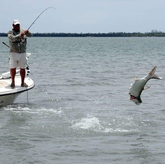 httpswww.outdoorlife.comsitesoutdoorlife.comfilesimport2014importImage2009photo7FINAL_7_Apalachicola_Fla_1_0.jpg