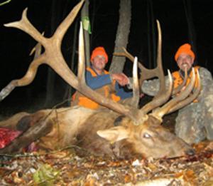 Potential State Record Elk Taken in Pennsylvania
