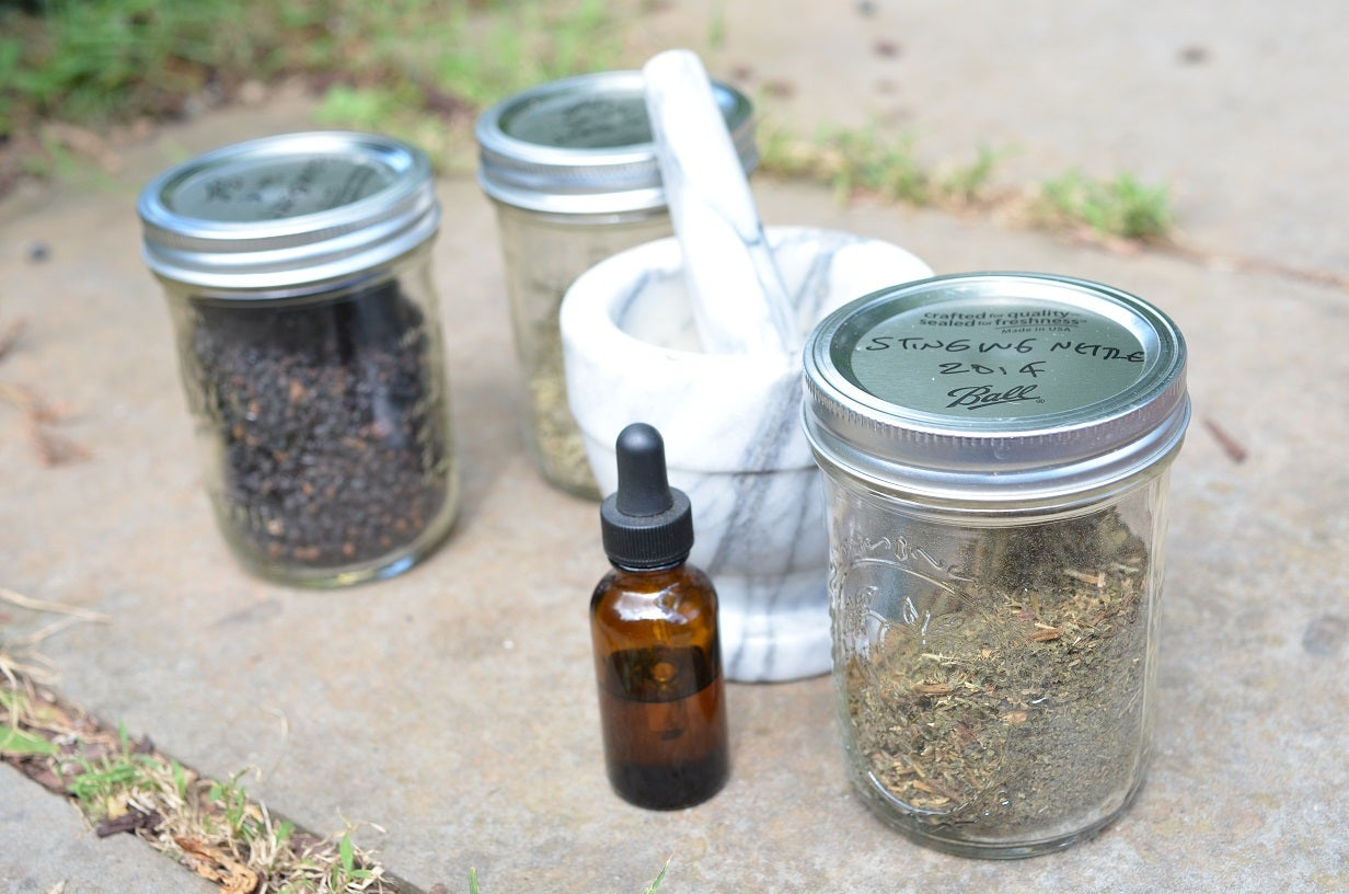 Survival Skills: How to Make 4 Medicinal Wild Plants Tinctures