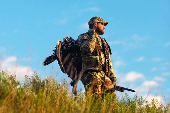 Turkey Hunting: Open-Field Gobbler Tactics
