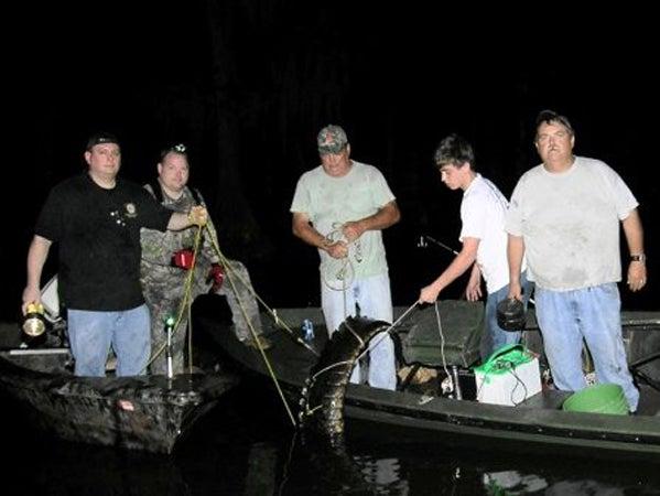 httpswww.outdoorlife.comsitesoutdoorlife.comfilesimport2013images20100818_Boat_Gator1_-_Copy_0.jpg