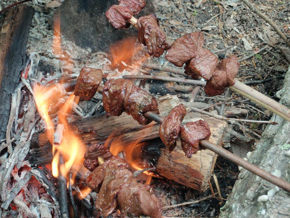 meat roasting over camp fire