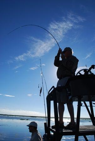 httpswww.outdoorlife.comsitesoutdoorlife.comfilesimport2013images20110412_11.jpg