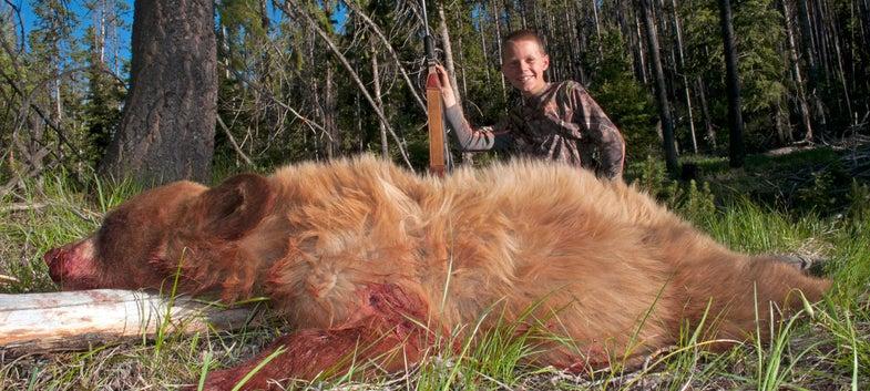 brown bear boys first hunt