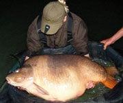 UK Angler Smashes World Record with 84lb. Carp