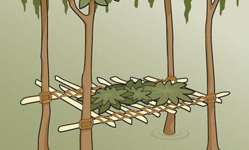 Survival Skills: How to Build a Swamp Shelter