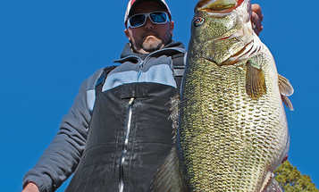 Tennessee Fisheries: Bigger, Badder Bass with Florida Strains