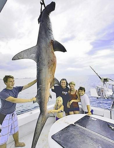 Rosie O'Donnell the Shark Hunter?