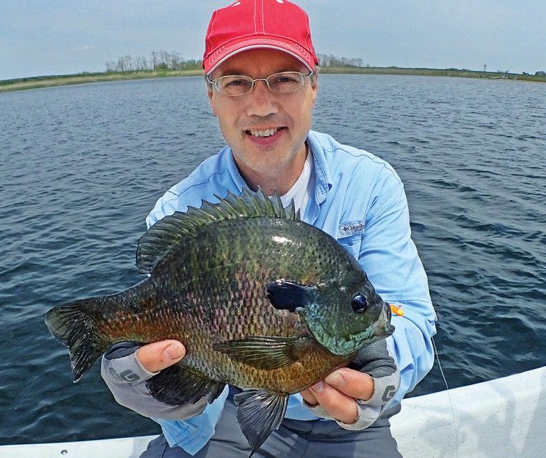 fishing for bluegills