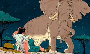 Bull-Headed: A Run-in with an Elephant's Trunkless End