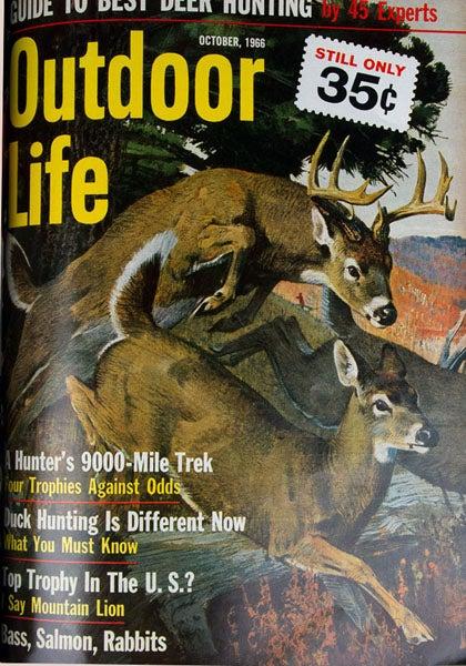 httpswww.outdoorlife.comsitesoutdoorlife.comfilesimport2013images2011071966_Oct_0.jpg
