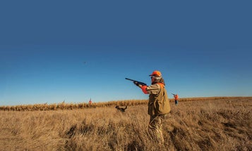 Wingshooters Countdown: Get Ready For Bird Hunting Season