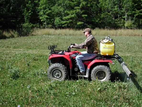 Whitetail Hunting: How to Keep Weeds Out of Your Fall Food Plots