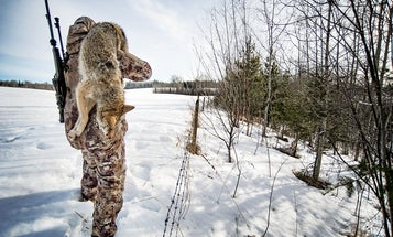 Coyote Nation: A Crash Course in Coyote Hunting