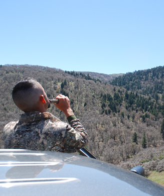 Turkey Hunting: 7 Scouting Tips