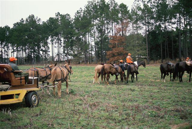 httpswww.outdoorlife.comsitesoutdoorlife.comfilesimport2014importImage2009photo716._Mississippi.jpg
