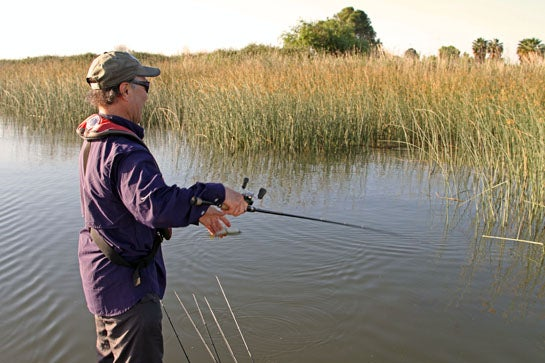 Bass Fishing Tip: Learn to Pitch a Variety Different Baits