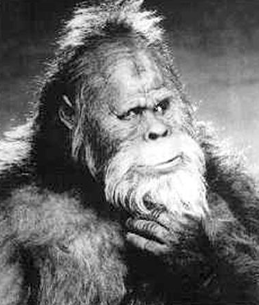 Park Service: Permit Required for Bigfoot Hunting Expeditions