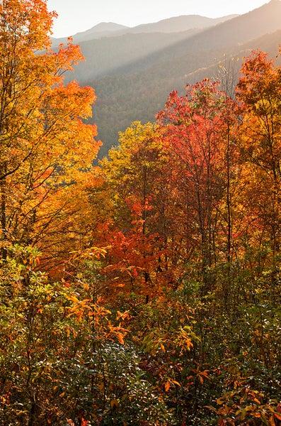 httpswww.outdoorlife.comsitesoutdoorlife.comfilesimport2013images20101019_11.jpg
