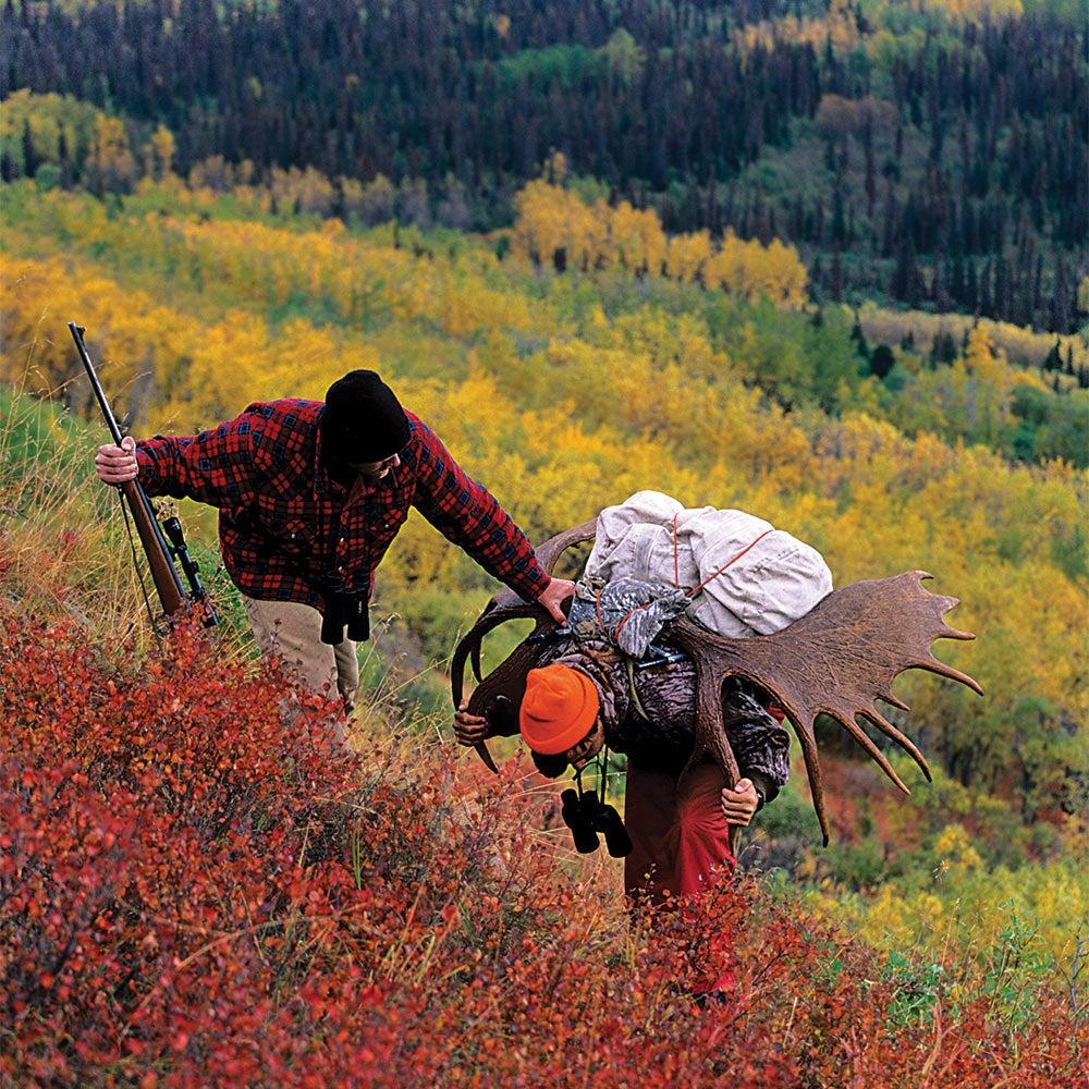 two hunters hauling moose through denali highway, alaska