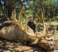 440-Inch Bull Taken with Governor's Tag in Arizona