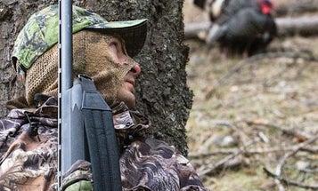 Hunting Tips: 4 Ways to Put the Sneak on Turkeys