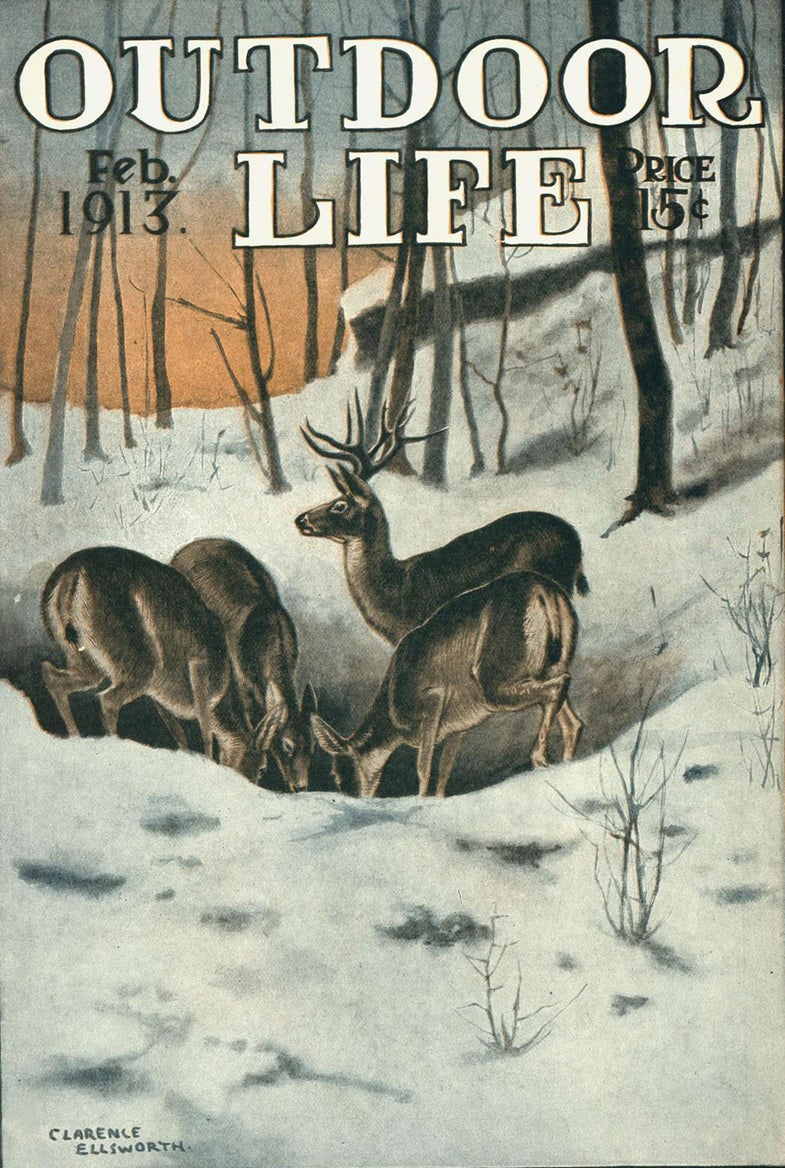 winter does and buck Outdoor Life cover