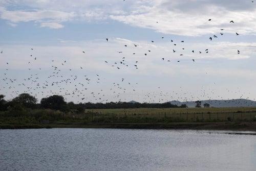httpswww.outdoorlife.comsitesoutdoorlife.comfilesimport2014importImage2009photo3TS-2.jpg