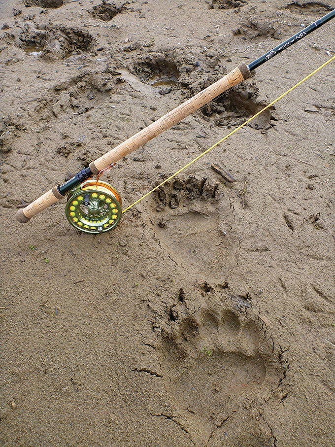 Alaska Adventure: Spey Casting to Salmon in Grizzly Country