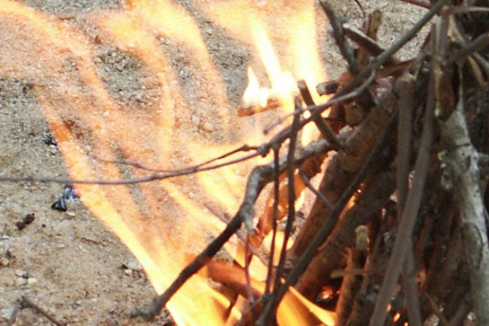 Survival Skills: 10 Steps to Light a One-Match Fire