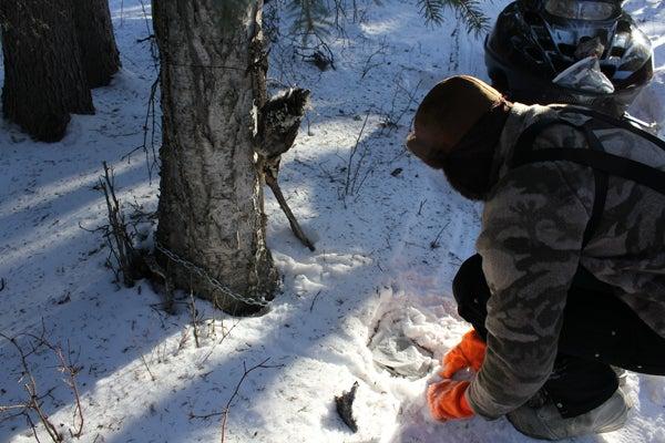 httpswww.outdoorlife.comsitesoutdoorlife.comfilesimport2013images20110316_16.jpg