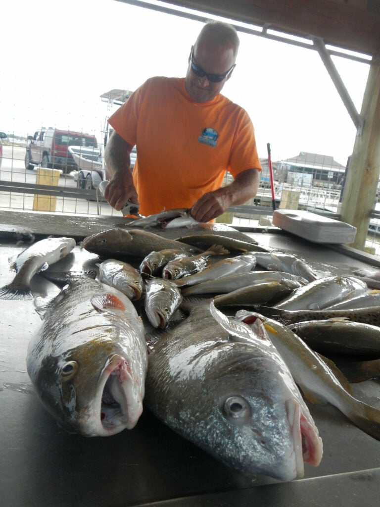 speckled trout fish fillet table