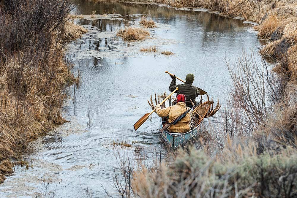 Two hunters carrying moose through saskatchewan river