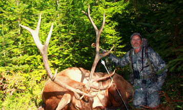 Your 3-Part Game Plan for Elk Bowhunting Success This Fall