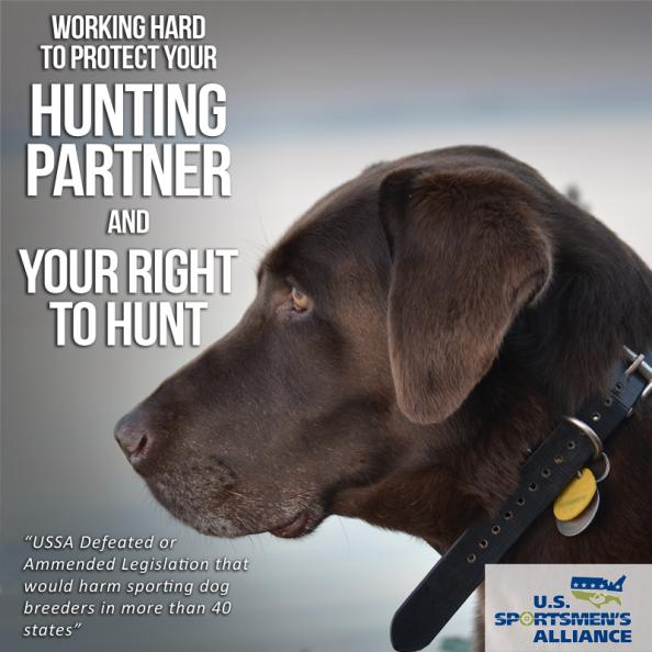 U.S. Sportsmen's Alliance Takes Fight to Crazy Anti-Hunters in California